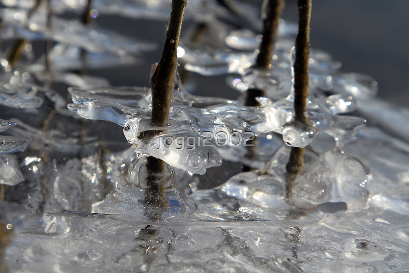 Icy Details by joggi2002