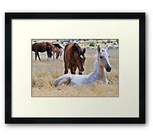 The Watchful Babysitter Framed Print