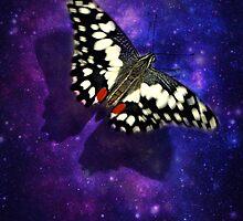 Fly, Fly, Fly Away by missmaestro123