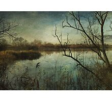 Waterlands Photographic Print