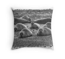 Seals on Blakeney Point Throw Pillow