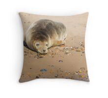 Seal Snoozing on Blakeney Point Throw Pillow