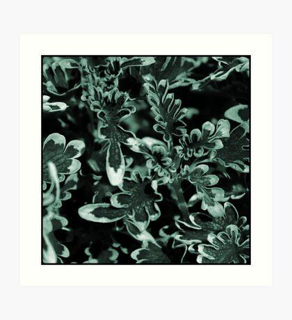 multi-colored foliage Art Print