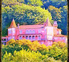 palace by terezadelpilar~ art & architecture