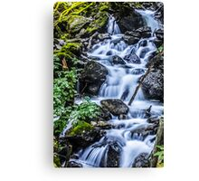 Cadair Idris Waterfall Canvas Print