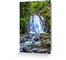 Waterfall At Cadair Idris Greeting Card