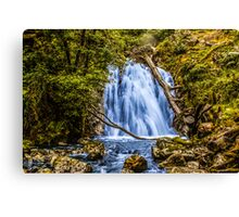 waterfall cadair idris Canvas Print