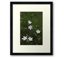 White Angel Flowers Framed Print
