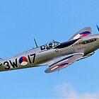 "Spitfire LF.IXc MK732/3W-17 PH-OUQ ""Polly Grey"" by Colin Smedley"