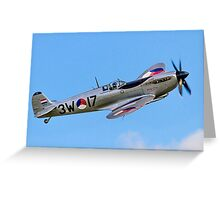"Spitfire LF.IXc MK732/3W-17 PH-OUQ ""Polly Grey"" Greeting Card"