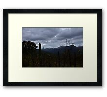 Vineyard in Calabria Framed Print