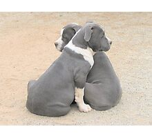 Bookends Photographic Print