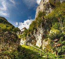 Slovenian castle by Ian Hufton