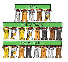 Cats in Santa hats Happy Christmas from Ohio. by KateTaylor