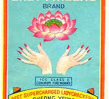 Vintage Firecracker Pack iPhone Case Series: Meet The Ladyfinger  by SESSHP