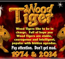 1974 2034 Chinese zodiac born in year of wood tiger by Valxart
