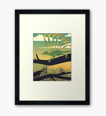 Longisquama Sunset Framed Print