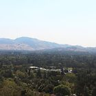 Mt. Diablo after the Fire by TERRIBLETRISTAN