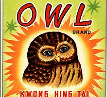 Vintage Firecracker Pack iPhone Case Series: The Owl Sees All by SESSHP