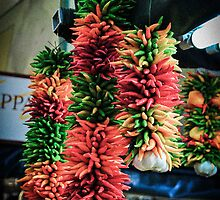 Colorful Chili Strand by SaraMichelle