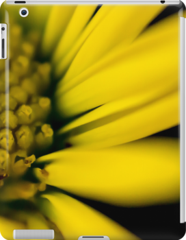 Melo Yello iPad case by John Velocci