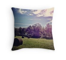 Upstate Hay Throw Pillow