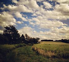 Upstate Fields by BrittneyMarie83