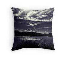 Upstate Lake- B & W Throw Pillow
