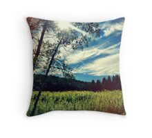Upstate Field & white birch  Throw Pillow
