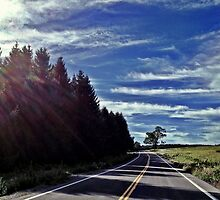 lone tree and road  by BrittneyMarie83