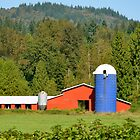 Patriotic Barn! by Carol Clifford