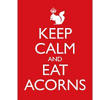 Royal Squirrel: Keep Calm and Eat Acorns Photographic Print