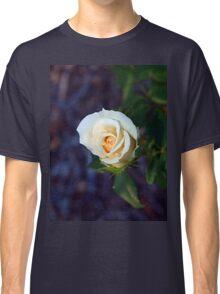 Light yellow rose Classic T-Shirt