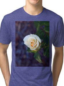 Light yellow rose Tri-blend T-Shirt