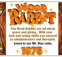 1975 2035 Chinese zodiac born in year of wood rabbit  by Valxart