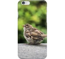 Little Feather Tasting iPhone Case/Skin