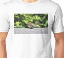 Little Feather Tasting Unisex T-Shirt