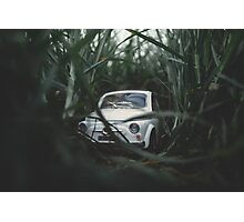 FIAT in the grass Photographic Print