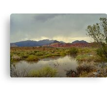 Red Rock Canyon After Rain Canvas Print
