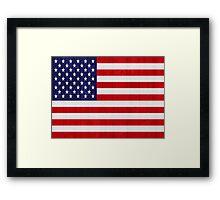 United States of America flag Framed Print