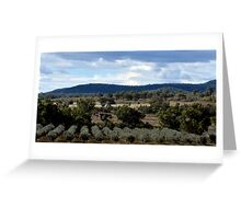 Olive Grove, Eulah Creek  Greeting Card