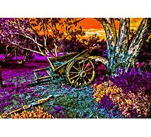 Once Upon A Cart Photographic Print