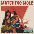 Matching Mole by peetmoloko