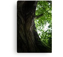 Fey Foliage Canvas Print