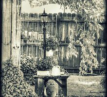 Bench Planter and Street Lamp HDR Monochrome by jemvistaprint