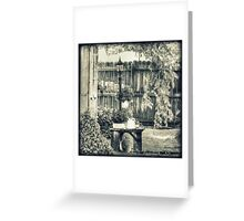 Bench Planter and Street Lamp HDR Monochrome Greeting Card