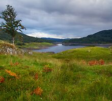 Glen Finglas Reservoir in the autumn by Gabor Pozsgai