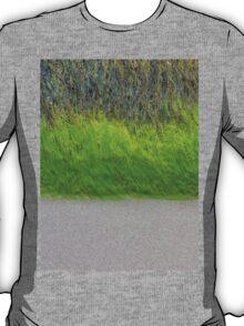 BEACH TRIPLE T-Shirt