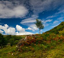 Glen Finglas autumn, Scotland by Gabor Pozsgai