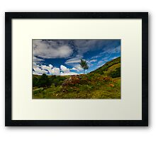 Glen Finglas autumn, Scotland Framed Print